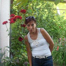 Alena, 51 год, Мукачево