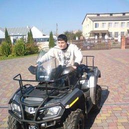 Богдан, 27 лет, Радехов