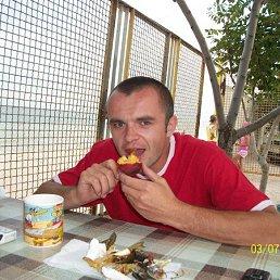 Стас, Недригайлов, 41 год