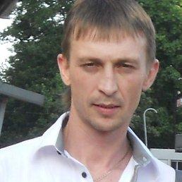 Слава, 42 года, Брянск-4