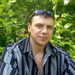 Сергей, 44 года, Волчанск