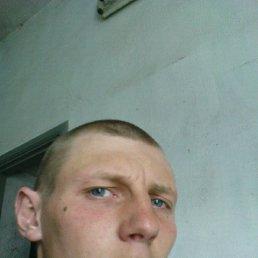 Саша, 28 лет, Приморск