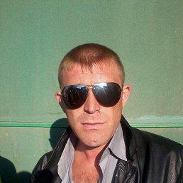 дима, 39 лет, Березники