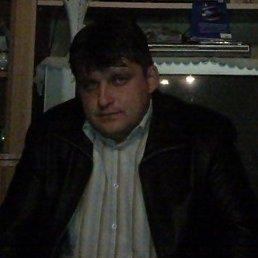 Александр, 44 года, Шишкин Лес