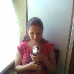 оля, 28 лет, Константиновка
