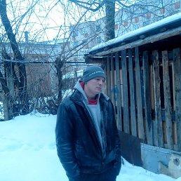 Сергей, 29 лет, Демидов