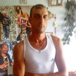 Виталий, 41 год, Украинск