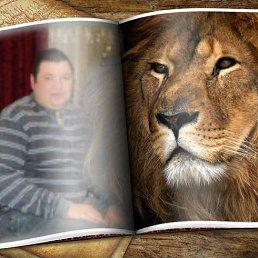 Сергей, 42 года, Белицкое