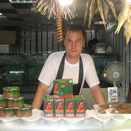 Сергей, 45 лет, Батецкий