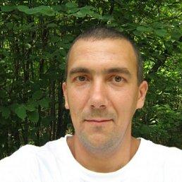 Саша, 45 лет, Коцюбинское
