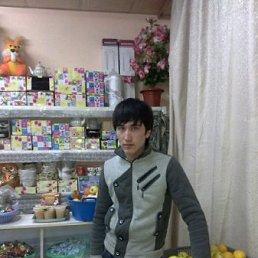 Muzaffar, 28 лет, Бобров