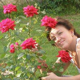 zoia, 42 года, Казань