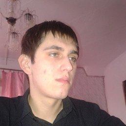 Міша, 27 лет, Острог