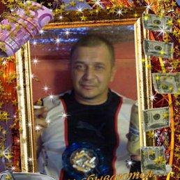Сергей, 53 года, Навля