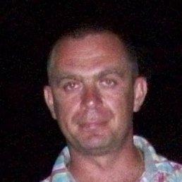 Konohovycz, Сокаль, 41 год