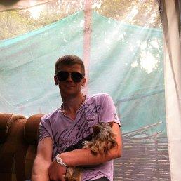 Андрей, 32 года, Москва