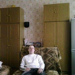 Владимир, 37 лет, Знаменск