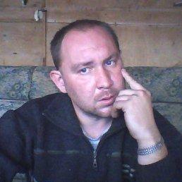 Николай, 23 года, Пошехонье