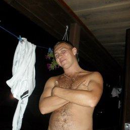 Руслан, 29 лет, Нетешин