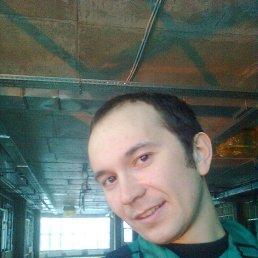 Дмитрий, 37 лет, Кшень