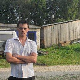 Владимир, 34 года, Килемары