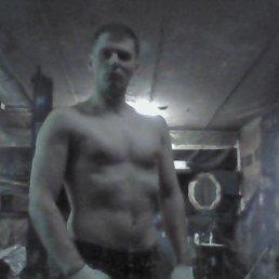 Наглый Кот, 37 лет, Москва - фото 1
