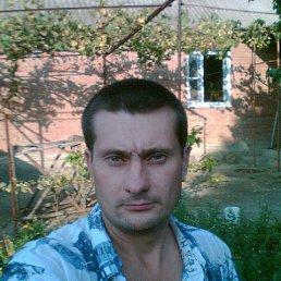Александр, 44 года, Покровское