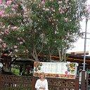 Фото Светлана, Ростов-на-Дону - добавлено 25 августа 2013 в альбом «Мои фотографии»