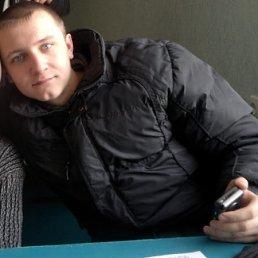 Владимир, 28 лет, Александрия