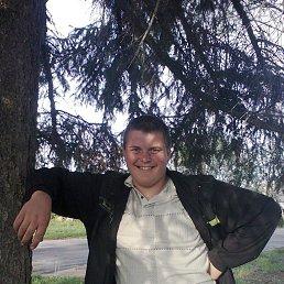 Юрій, 27 лет, Коростень