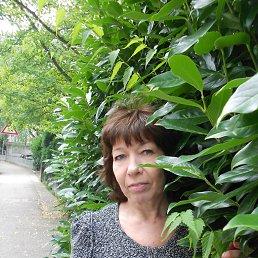Инна, 61 год, Сосновый Бор