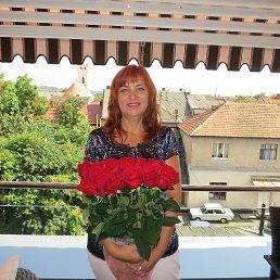 Елена, 59 лет, Мукачево
