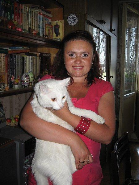 Фото: Порода: Обычная домашняя. для выбора такую породу не предоставили - Американская короткошерстная - Е-Лена Gold, 47 лет, Бурмакино