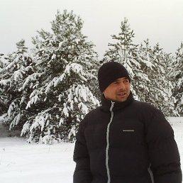 Вова, 41 год, Новая Одесса