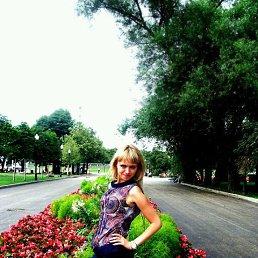 Полина, 29 лет, Фрязино