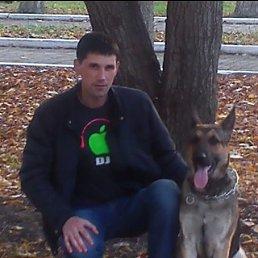 Павел, 30 лет, Константиновка