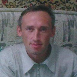 Сергей, 44 года, Лысьва