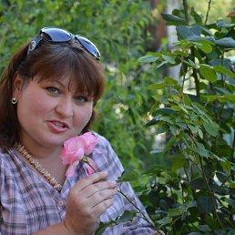 Елена, 42 года, Куты