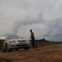 Денис, 27 лет, Красногорский