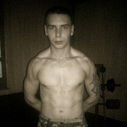 Сергей, 27 лет, Кировск