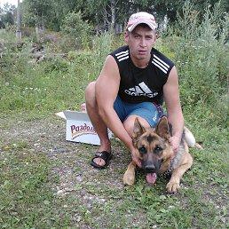 Денис, 35 лет, Пестово