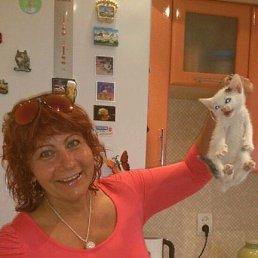 Лариса, 56 лет, Тула