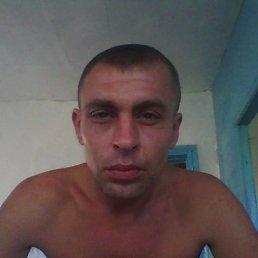 Денис, 36 лет, Донгуз