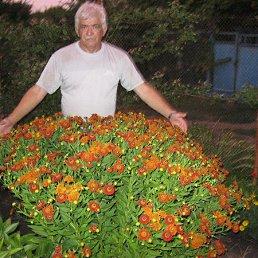 Юрий Сергеевич, 66 лет, Новотроицкое