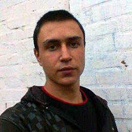 Антон, 28 лет, Миргород