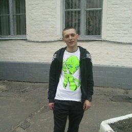 Андрюха, 26 лет, Сторожинец