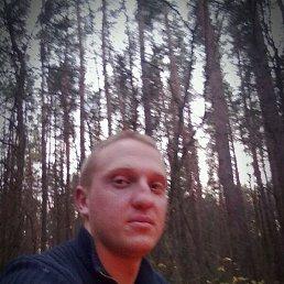 Сергей, 30 лет, Белополье