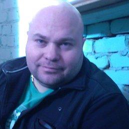 Игорь, 38 лет, Раменское