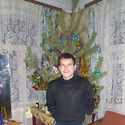 Александр, 32 года, Мглин