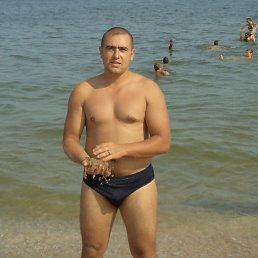 Павел, 37 лет, Северск